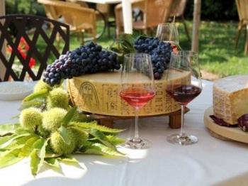VINO BARDOLINO e formaggio Monte Veronese