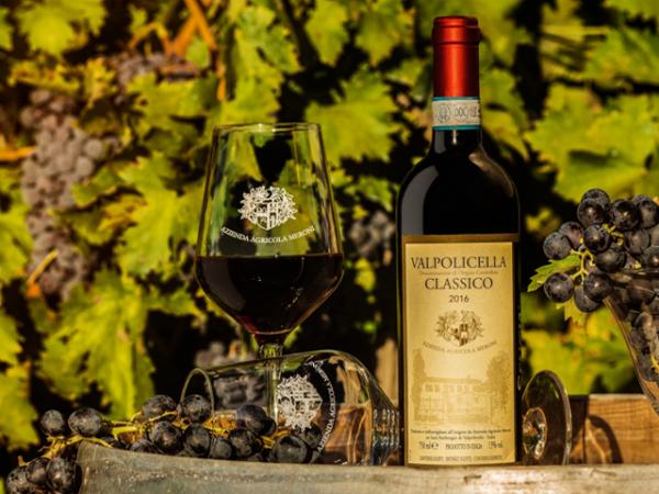 vino VALPOLICELLA CLASSICO